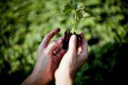 b_180_160_16777215_00_images_Agricoltura_donne-agricoltura.jpg