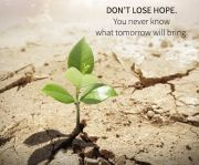 b_180_160_16777215_00_images_CONCETTI_NEVER_LOSE_HOPE.jpg