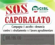 b_180_160_16777215_00_images_SOS_Caporalato_Locandina_per_sito_tendina_grigia.jpg
