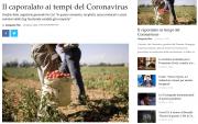b_180_160_16777215_00_images_Screenshot_2020-03-29_Il_caporalato_ai_tempi_del_Coronavirus_uno_sguardo_agli_sfruttati1.png